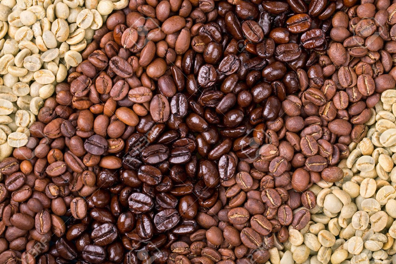 20408743-a-selection-of-fresh-roasted-and-unroasted-coffee-beans-arranged-in-a-diagonal-stripe...jpg