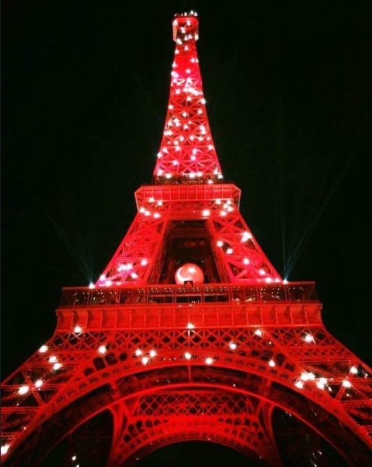 Avrupa futbol şampiyonası 2016 France Fransa Eiffel Tower Eyfel Kulesi Türk Bayrağı Turkish  8.jpg