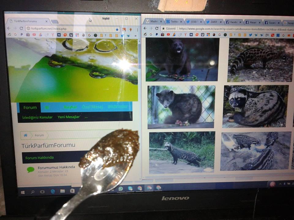 civet miski kıl içinde ışıklı çekim arkada turkparfum net sitesi web site civet musk paste f k 2.jpg