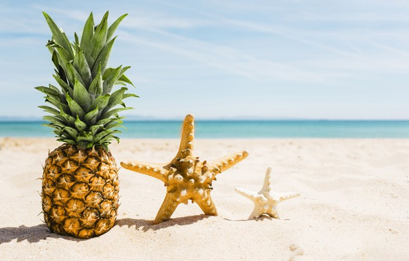 leto-ananas-sand-sea-pliazh-otdykh-kanikuly-summer-pineapple - Kopya.jpg