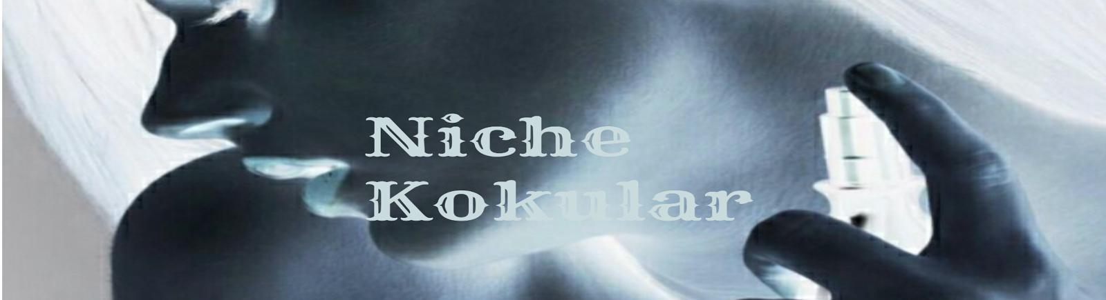 Niche Kokular ekran resimi sitesinden sketch-1470102273052-2527x687.png