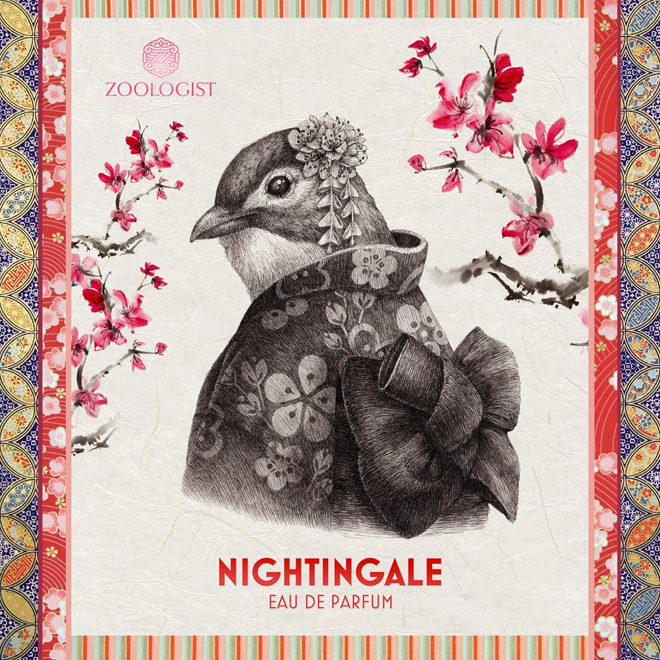 nightingale1.jpg